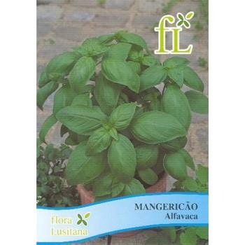 Mangericão - Alfavaca...