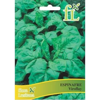 Espinafre Viroflay 10 Gr