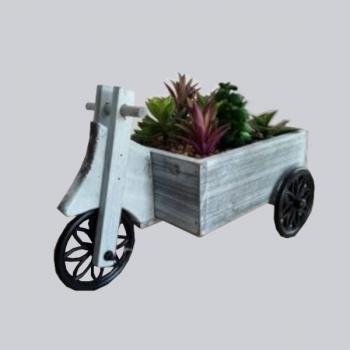 Carroça Madeira C/ Plantas