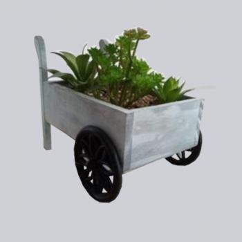 Carro Mão Madeira C/ Plantas