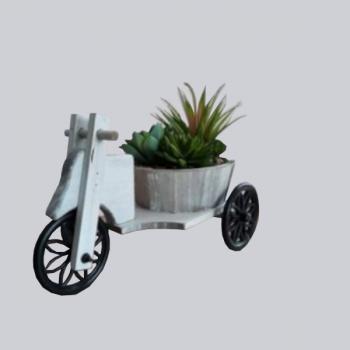 Triciclo Peq Madeira C/...