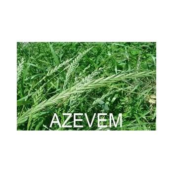 Azevem Anual 25 Kg