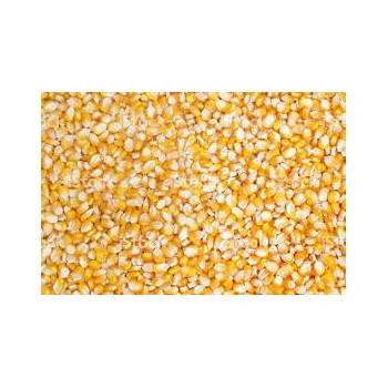 Milho Inteiro 30 Kg Jsc