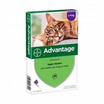 Advantage 80 Gt 4 Kgs