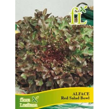 Alface Red Salad Bowl 5 gr