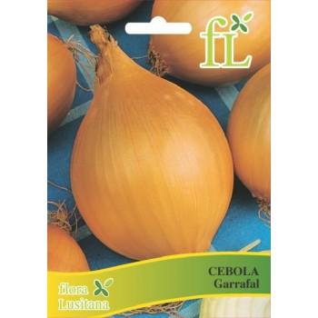 Cebola Garrafal 10 gr