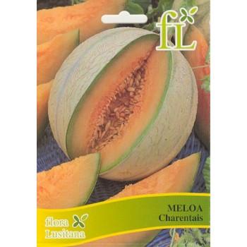 Meloa Charentais 10 Grs