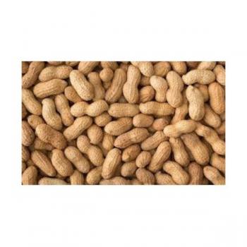 Amendoim Cru p/ Aves 350 Gr