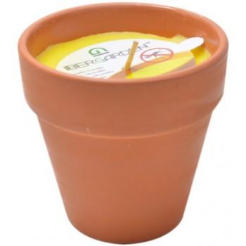 Vela Citronela em Vaso