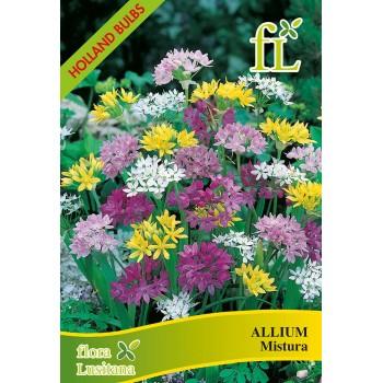 Allium Mistura S/15